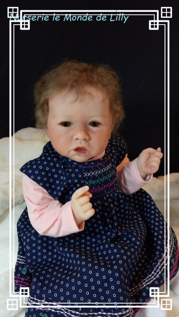 nurserie du monde, bébé reborn fille,poupon, bébé reborn garçon, bébé reborn, layette, petit gilet, brassière,ouzouer sur loire,loiret,